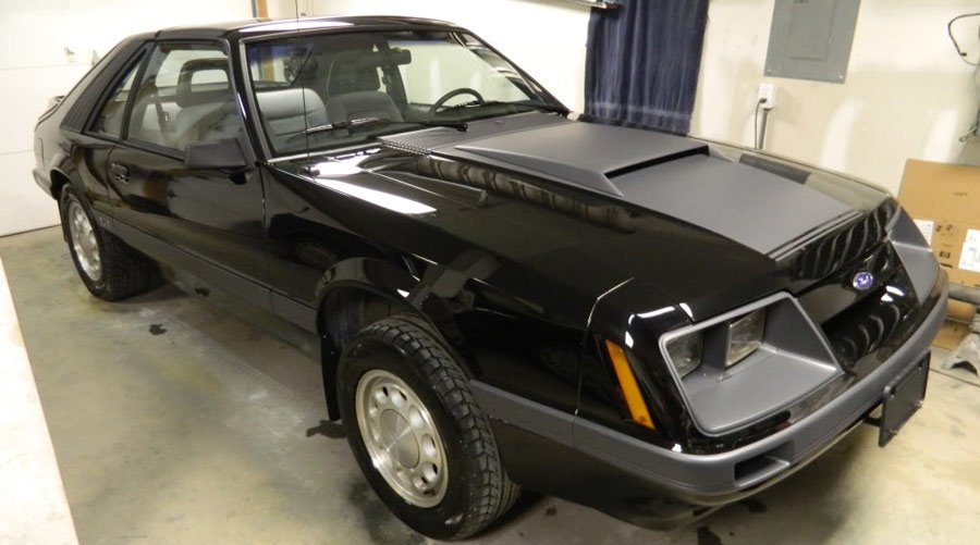 Dominator Mustang