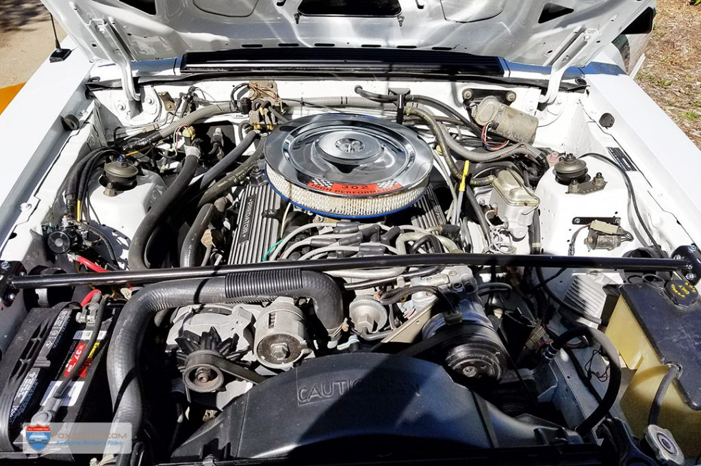 Fox Mustang Engine bay - Predator GT302