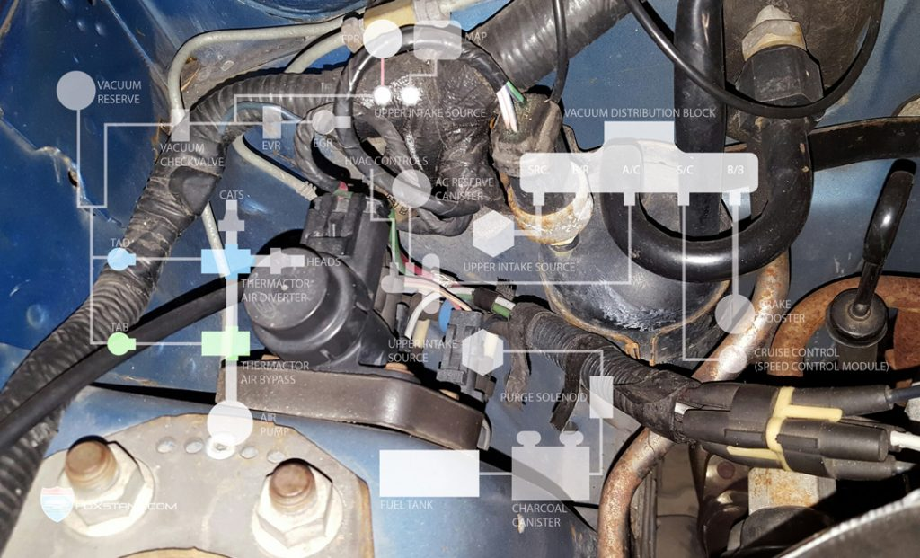 1987 cougar wiring diagram fox mustang smog system help  86 93  foxstang com  fox mustang smog system help  86 93  foxstang com