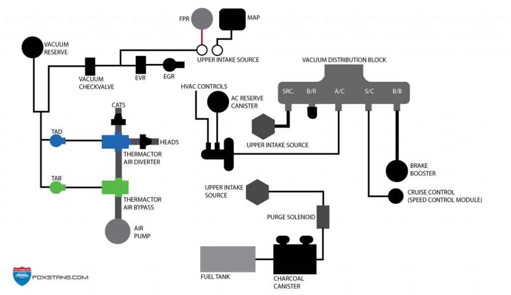 Fox Mustang Smog System Help  86-93