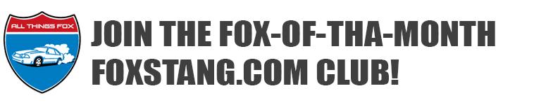 FOX MUSTANG READERS RIDES